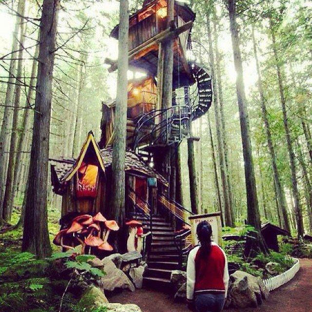 Treehouses_03