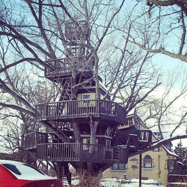 Treehouses_16