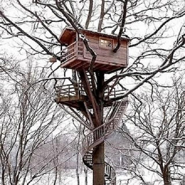 Treehouses_17