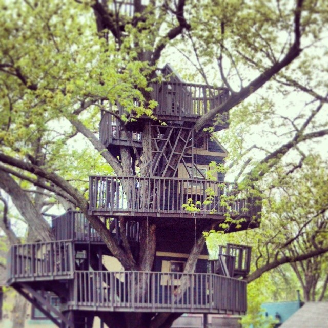 Treehouses_18