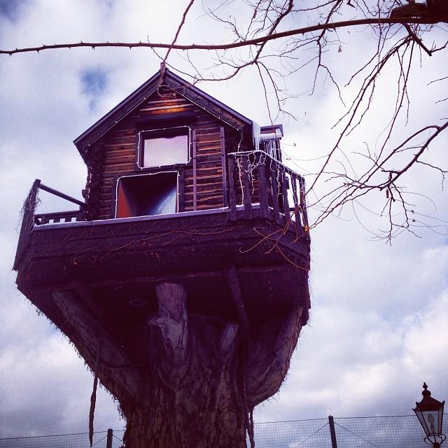 Treehouses_23