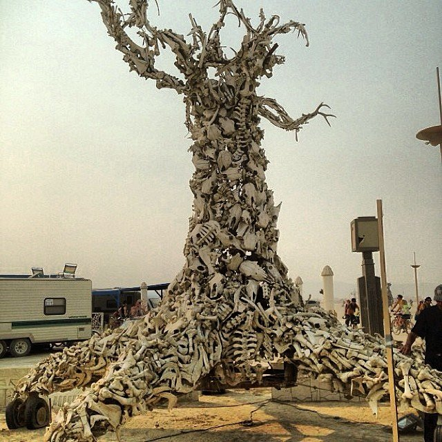 BurningMan_15