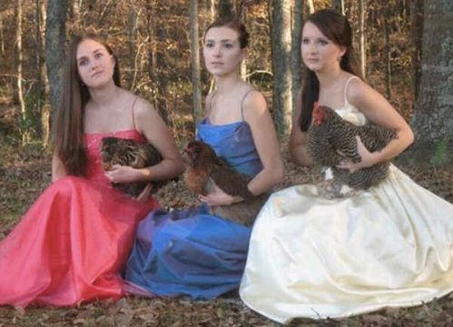 embarrassing-prom-photos-chickens.jpg