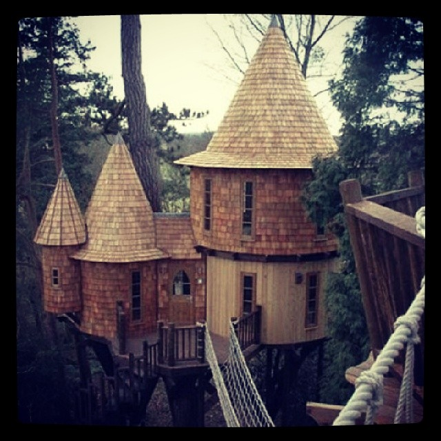 Treehouses_05