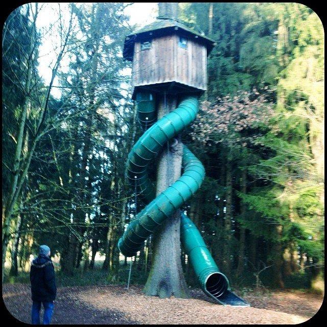 Treehouses_10