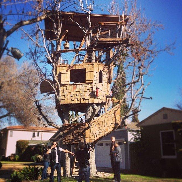 Treehouses_11