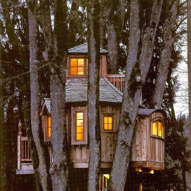 Treehouses_13