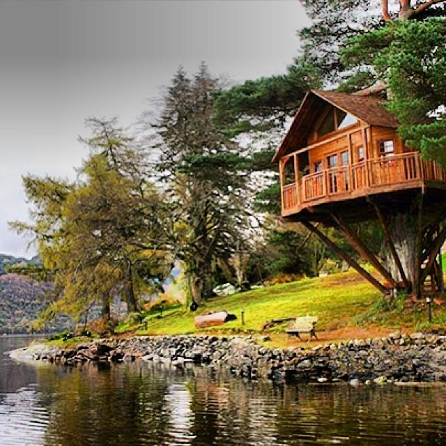 Treehouses_14