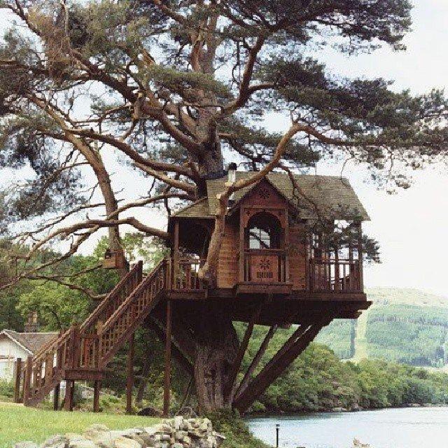 Treehouses_19