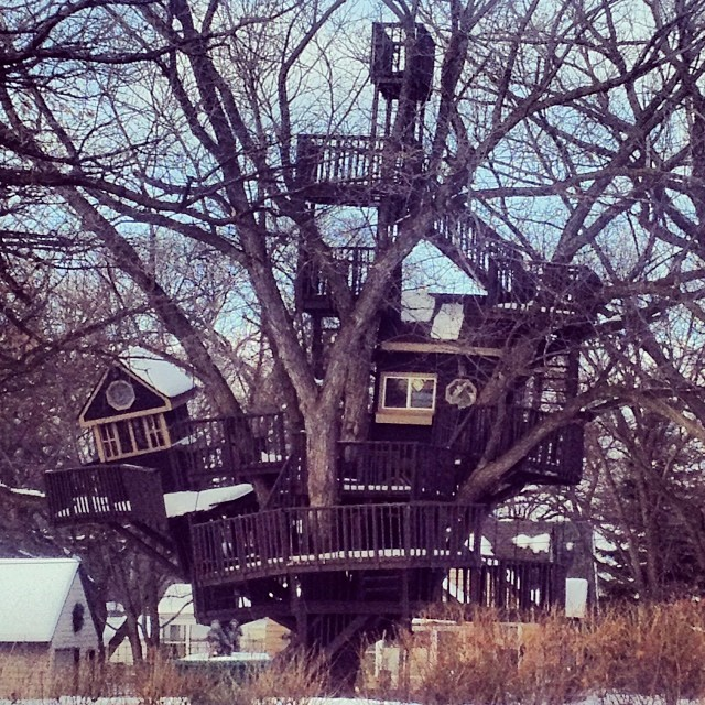 Treehouses_21
