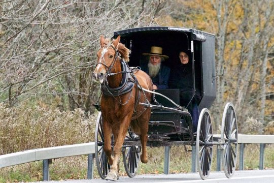 web-amish-usa-people-carriage-horse-teddy-llovet-cc-min.jpg